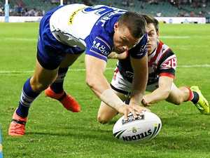 Roosters and Dogs count cost of brutal clash