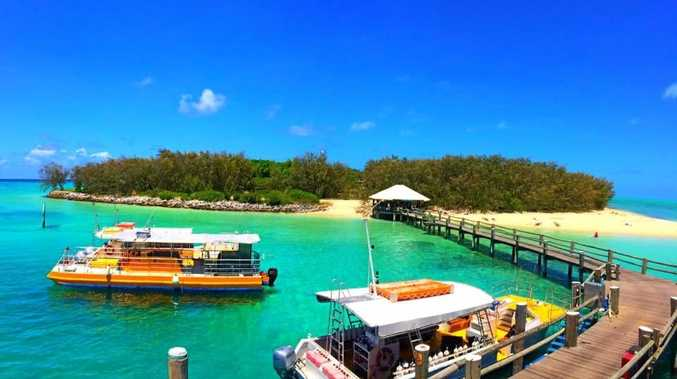 PRISTINE: Heron Island is one of Gladstone's great tourism hot spots.
