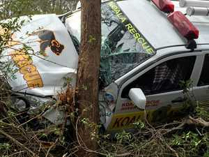 Koala recue heroes grounded after crash
