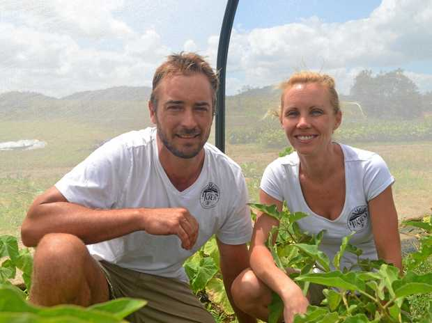 ALL NATURAL: Mel Schofield and husband Dan use the Community Supported Agriculture model on their Hillfields Farm.