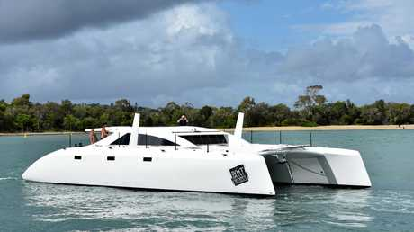 Noosa's big cat prowls through river mouth.