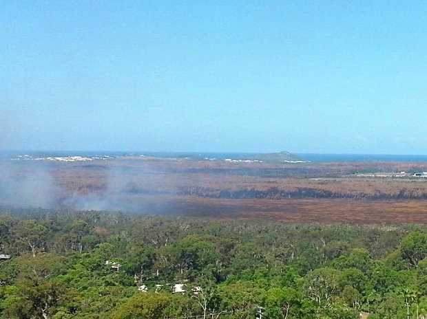 AFTER THE FIRE: Swampland near Coolum in the wake of the January fire. The swamp is brown and still smoking.