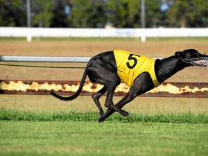 Under Advice lands Bundaberg Cup in dominating victory
