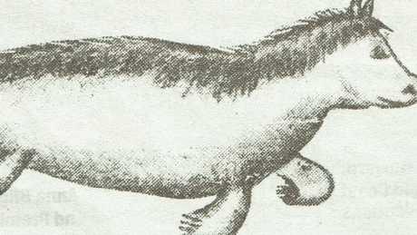 A sketch of a bunyip, seen by Mathew Heeb in 1929.