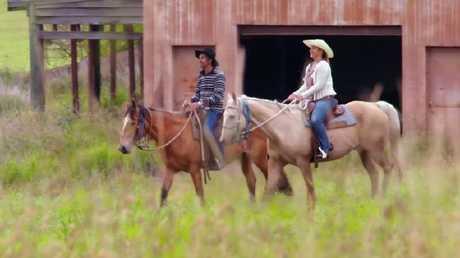 Horse + woman.