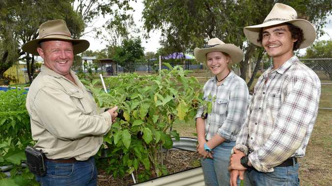 Backyard produce - Director of Stickit Rural Training Group has proposed the idea that vegetable gardens could be built in backyards and the produce sold to the region. Pictured with students Abby Hansen and James Redding.