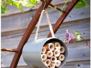 Why not install a bee hotel in your garden to attract the little creatures? a pipe and bamboo can do just the trick.