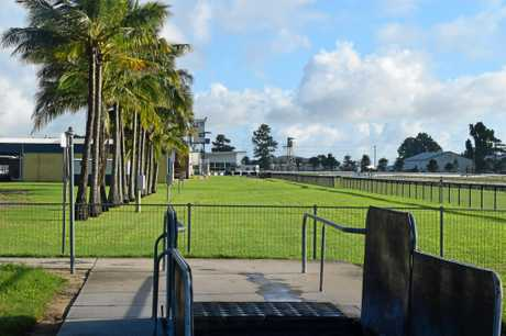 Mackay horse trainer Mark Cochrane said he coaxed Stone Philosopher into the pool and at no point hit the horse on the head or neck.