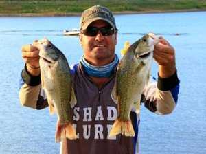 Basstasstic weekend for Chinchilla angler