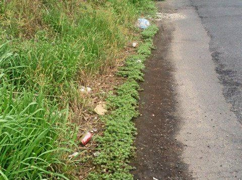 A second stage in the litter reduction campaign by North East Waste has started this week so litterers beware.