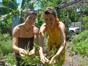 Garden growing, giving in abundance