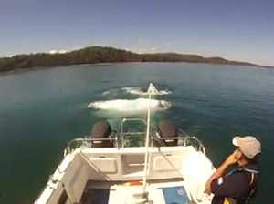 Watch Hervey Bay rescue group save sinking boat