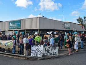 Protests over Boral's North Coast forestry deal