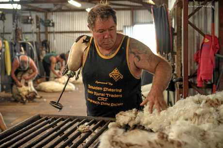 Dave Wyllie skirting a fleece with his prosthetic arm attachment for wool classing.