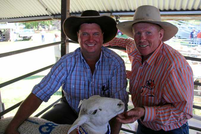 TOP LAMB: Angus Gross and  George McVeigh with a winning prime lamb.