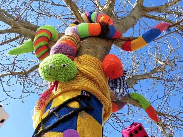 The theme for this year's Tree Jumpers competition has been announced.