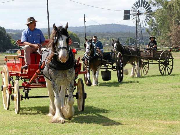 SHOW HIGHLIGHT: The horse spectacular grand parade will include heavy horses to open the 150th Warwick Show this Friday night.
