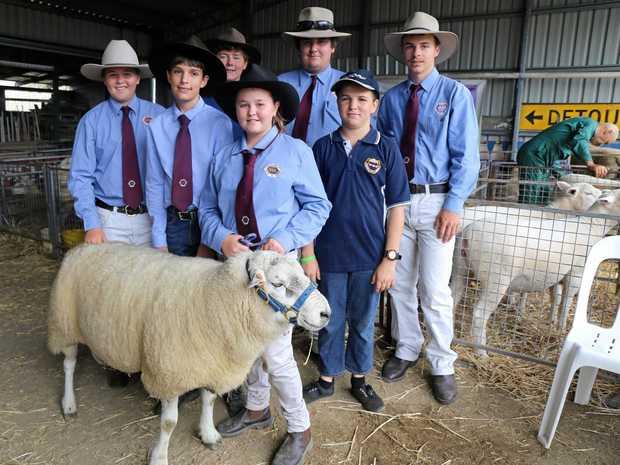 Warwick State High School ag team Cameron Dagg, Kieran Watts, Joshua Harvey, Brianna and Aaron Dagg, Ashley Watts and Ayden Coall.