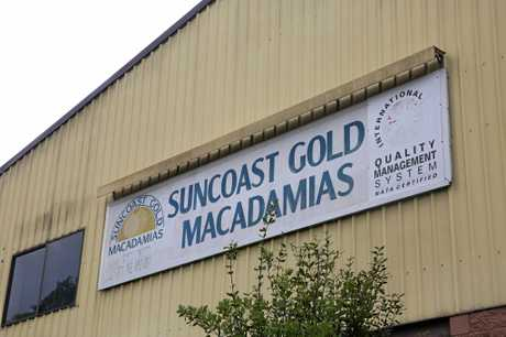 LOCAL EMPLOYER: Suncoast Gold Macadamias have announced they have boosted their staff number to around 68 employees.