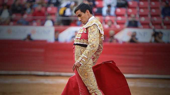Antonio Romero gets gored by a bull in Mexico City.