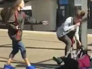 Girls in 'racially-motivated' fight as others watch on