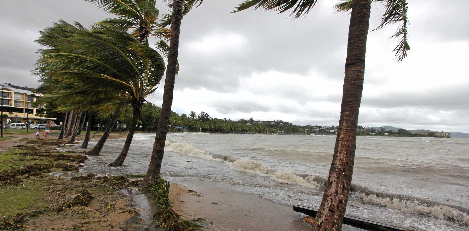 BLUSTERY: A wind-swept Airlie Beach after the Tropical Cyclone Dylan hit in 2014.