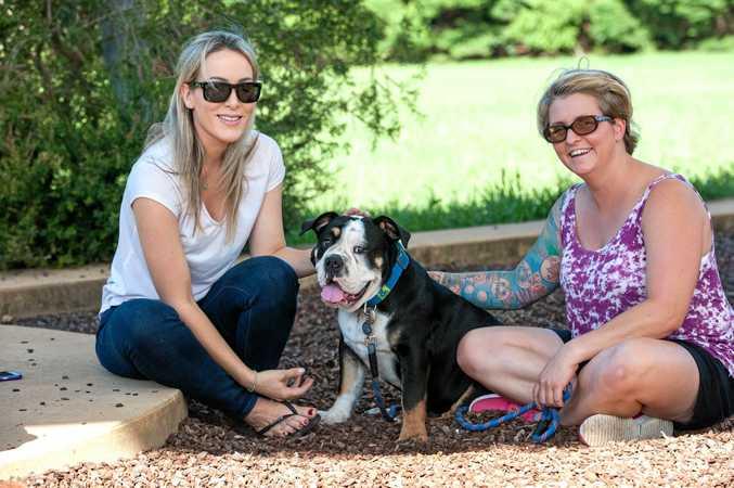 GOOD DEED: Miranda Predo spared no time to help pull Mel Kemp's Australian bulldog from