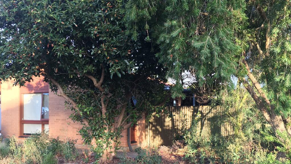 The Callana Crt, Craigmore, home where the attacked happened.