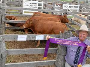 Bill Gross with the ribbon for his champion pen of three prime cattle at the Warwick Show.