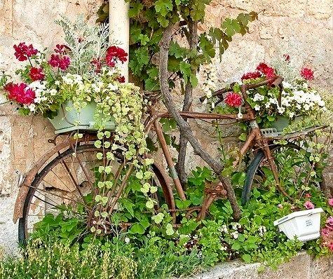 A rusty old bike can make your garden simply beautiful.