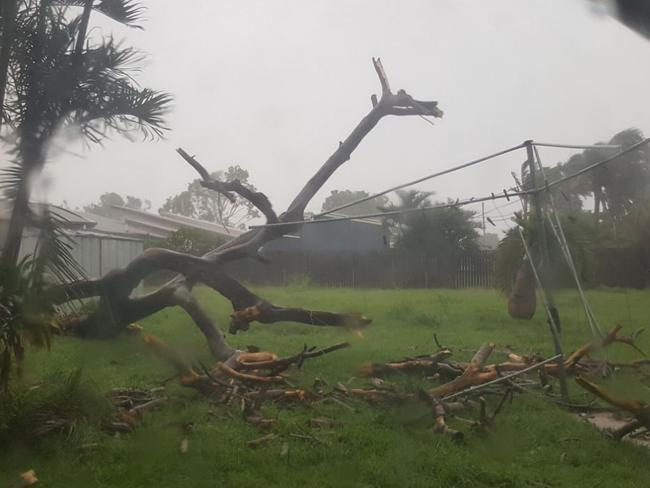 Destruction begins in Bowen which is expected to be among the worst affected areas. Facebook user Tracy Levett posted this image of her backyard in Bowen, Queensland. Picture: Tracy Levett/FacebookSource:Facebook