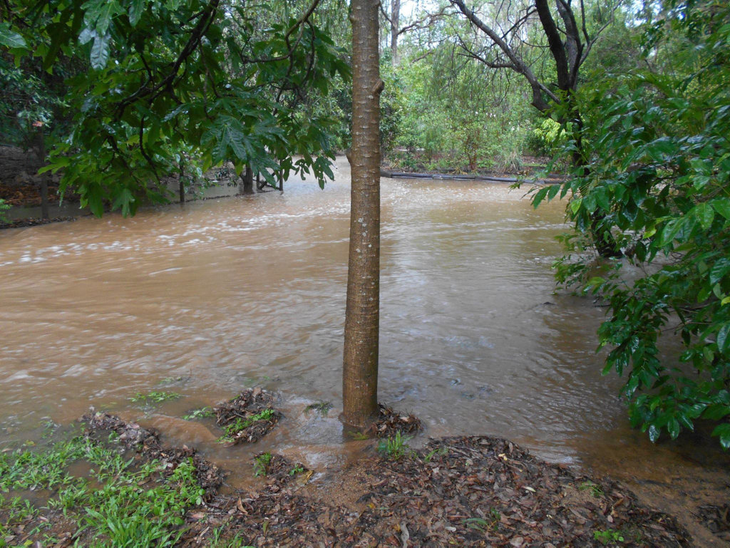 HIGH FLOW: Judy Petschulies took this flood pic at Apple Tree Creek. Photo: contributed