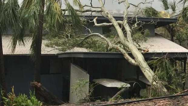 Trees have fallen on buildings on Hamilton Island. Picture: Jacqui McCullough.