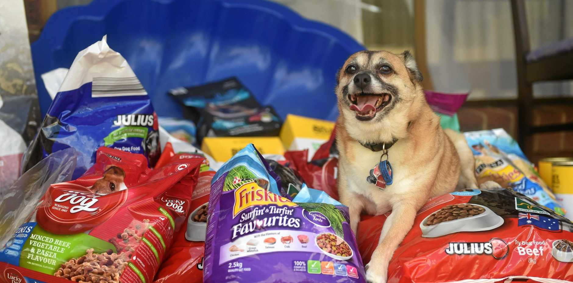 Moreton Lost Animal Register are collecting donations of pet food to help those affected.