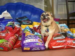 Donate dog food for Debbie victims