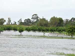 Region granted $1.5m to tackle Cyclone Debbie damage