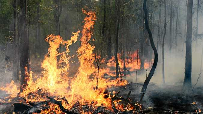 SEASON OVER: Bush fire danger period deemed over for Coffs Harbour and Dorrigo Local Government Areas. Permits for hazard reduction burns will not be needed from April 1.