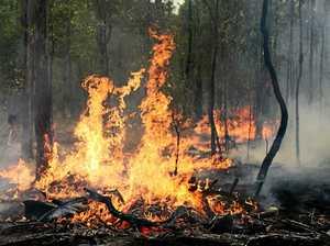 Bush fire danger period declared over on the Coffs Coast