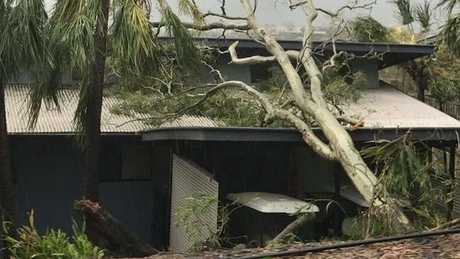 Trees have fallen on buildings on Hamilton Island.