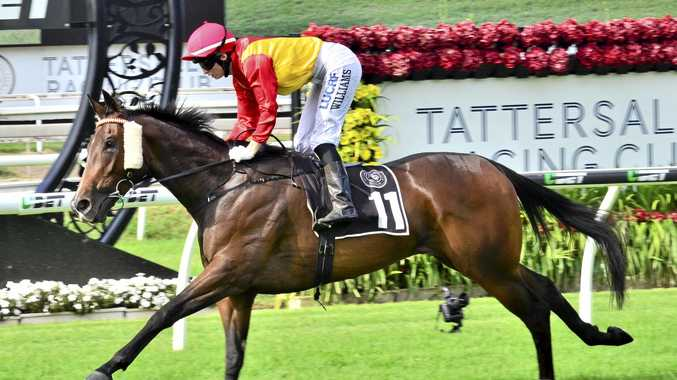 Toowoomba filly Our Beebee winning at Eagle Farm for apprentice Bec Williams.