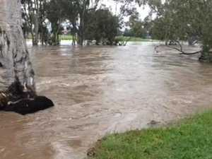 The Condamine River at the eastern end of Churchill Drive