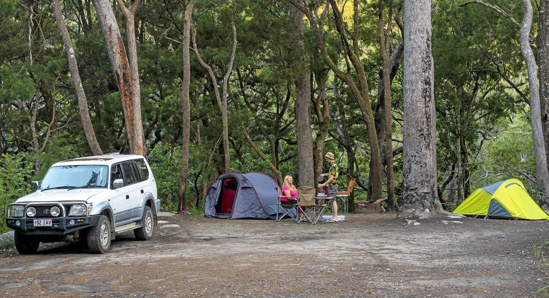 Upper Davies Creek camping area at Dinden National Park