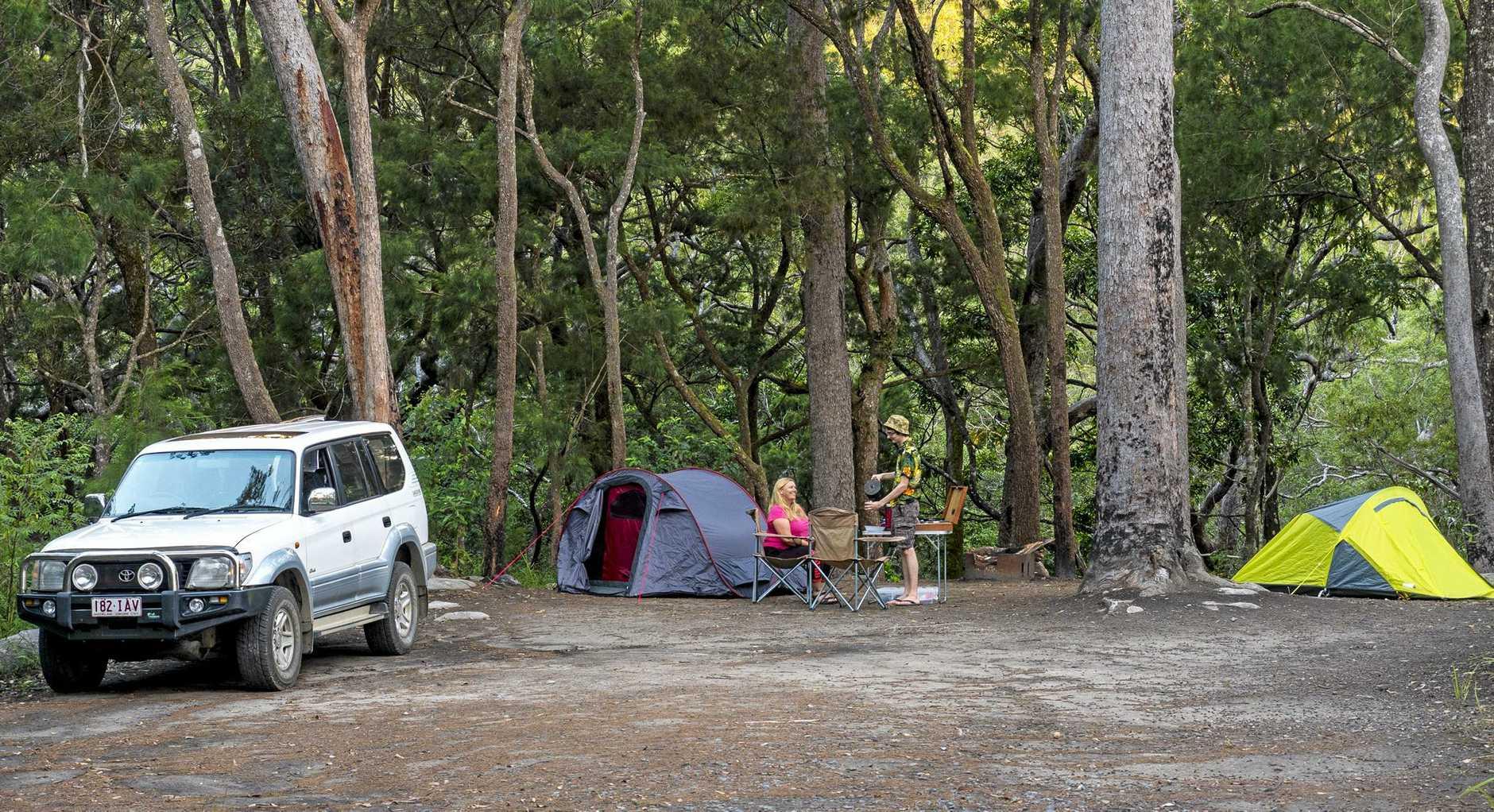 Upper Davies Creek camping area at Dinden National Park.