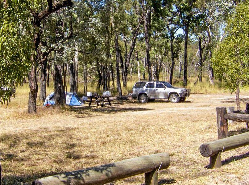 Salvator Rosa Nogoa River camping area in Carnarvon National Park.