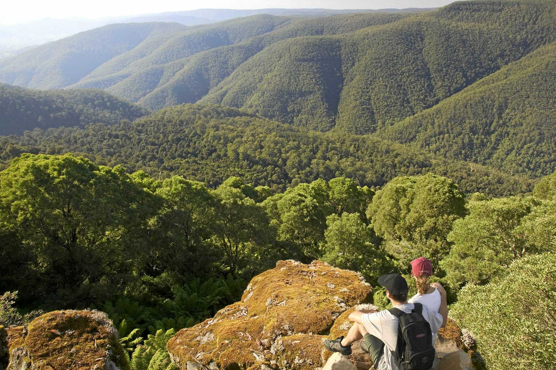 A couple enjoys the view at Thunderbolts Lookout at Barrington Tops National Park.