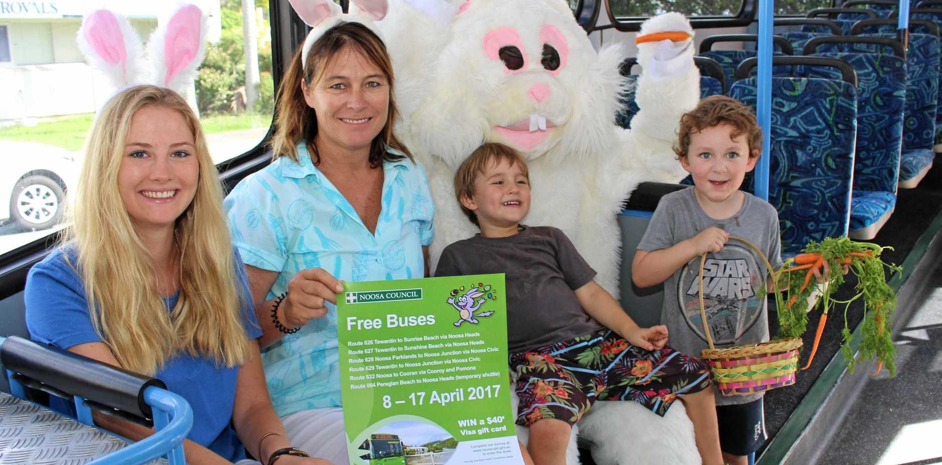 Noosa's free bus service returns   Sunshine Coast Daily