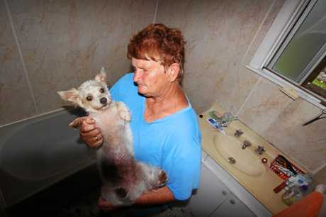 Proserpine local Helen Muller with her dog Poppa after spending 24 hours in the bath tub during Cyclone Debbie.