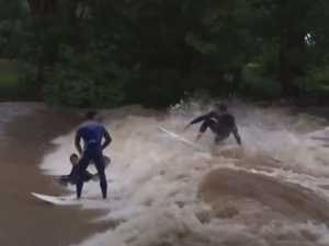 Thrill seekers surf flood waters