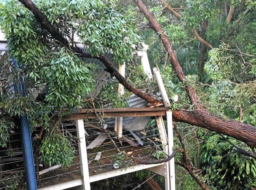 Kerryn Hurae's Buderim home was smashed by a tree during last week's wild weather.