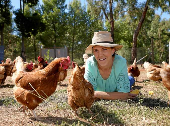 Anna Lashbrook brings some of her Isa Brown hens to the local nursing home as part of an animal therapy process.